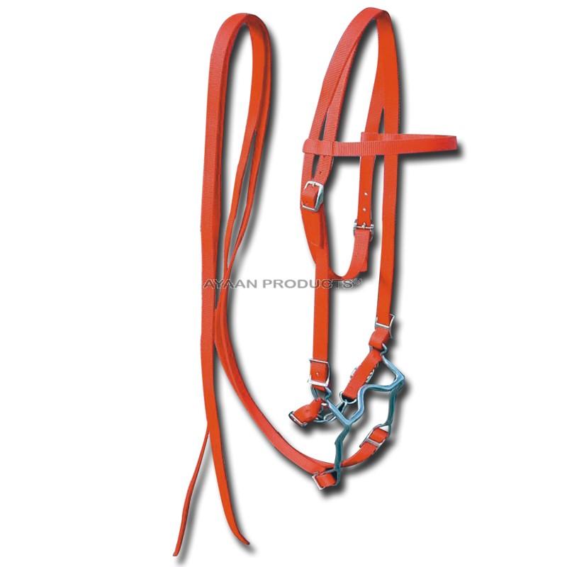 Horse Bridles Orange