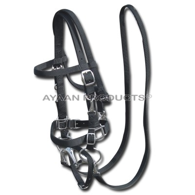 Horse Bridle Black
